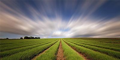 Mezőgazdasági technikus tanfolyam