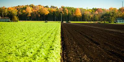 Ökológiai gazdálkodás tanfolyam